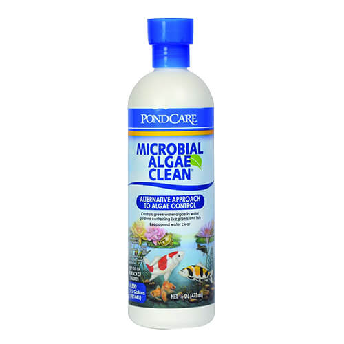 API Pond Microbial Algae Clean 16 oz. (MPN 269 B)