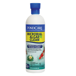 02269 - API Pond Microbial Algae Clean 16 oz. (MPN 269 B)