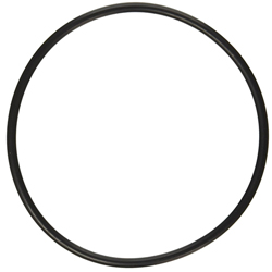 Lid O-Ring for 500 cu in Basket Strainer, 10 inch (MPN 1000.772-O)