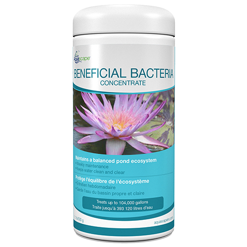 Aquascape Beneficial Bacteria - Dry - Best Prices on ...