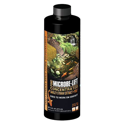 Microbe-Lift Barley Straw Extract & Peat 16 oz. (MPN BSEP16)