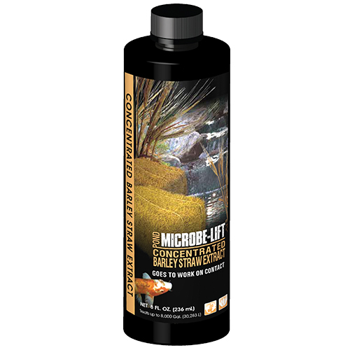 Microbe-Lift Barley Straw Extract 250 ml, 8 oz. (MPN MLCBSE250)