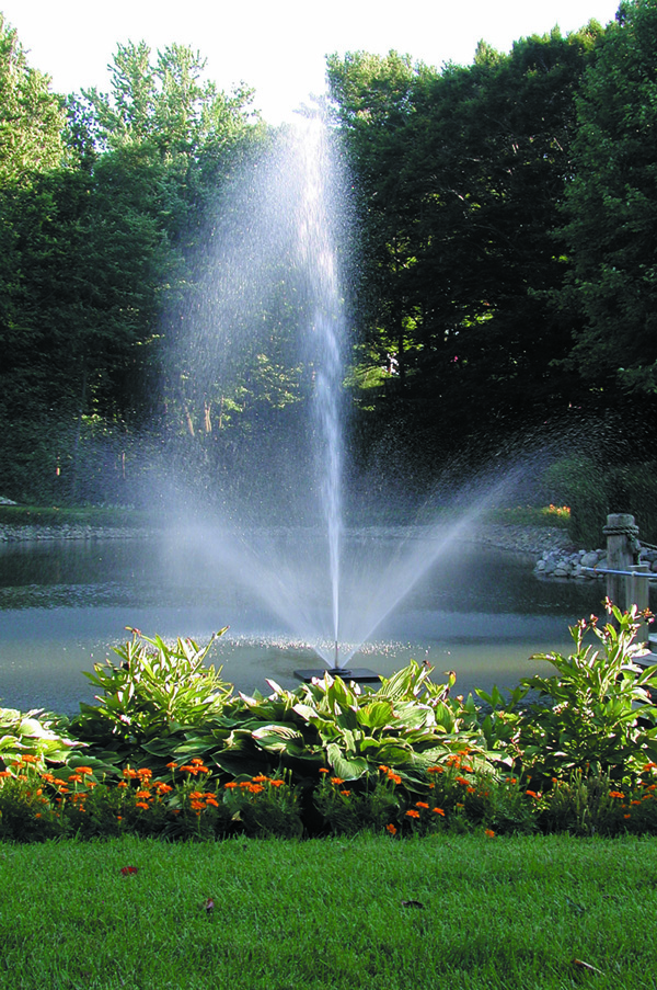 Scott Aerator Skyward Fountain ½ hp, 230 V, 100' Cord (MPN 13006)
